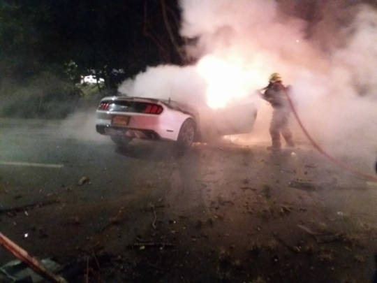 Accidente Mustang