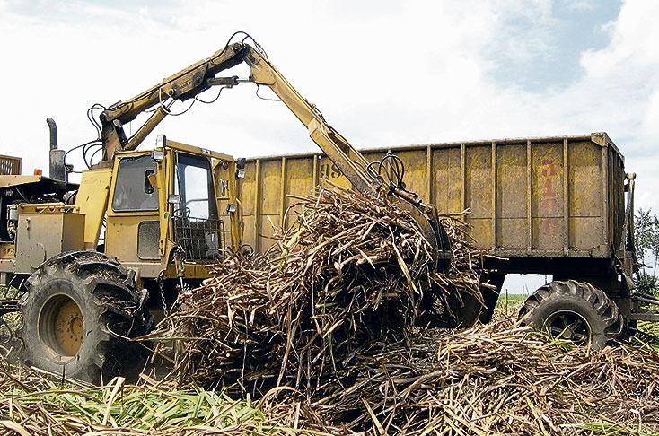 ¿Qué pasa con las importaciones de azúcar en Colombia?