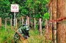 Ejército está listo para iniciar desminado humanitario en el Cauca