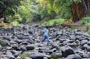 Aclare sus dudas sobre las sanciones a los derrochadores de agua