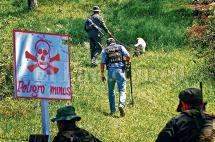 """""""Los niños son los más vulnerables con las minas"""": coordinador de Campaña Contra las Minas"""