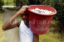 El 'efecto' del chocolate que ayudó a los campesinos tumaqueños a dejar atrás la coca