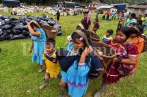 En imágenes: la llegada de los Embera Katío que estaban en Cali a Risaralda