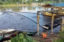 Lo de Tumaco es una tragedia ambiental silenciosa: Francisco Lloreda