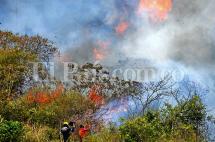 En fotos: las zonas afectadas por incendio forestal en Dapa