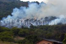 Más de cien bomberos intentan controlar incendio forestal en Medio Dapa