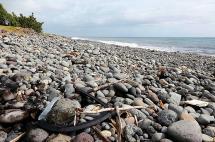 Restos de avión encontrados en isla francesa sí son de Malaysia Airlines