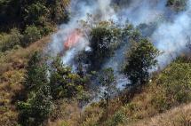 Incendio en zona rural de Florida ya deja más de 600 hectáreas afectadas