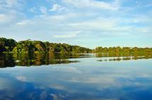 Ordenan suspender explotación minera en un millón de hectáreas de la Amazonía
