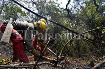 En fotos: 15.000 metros cuadrados de pasto se quemaron este domingo en Golondrinas