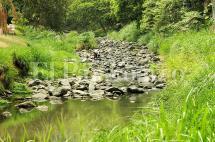 Aguas negras y minería, los males que tienen 'agonizando' a los ríos Cali y Aguacatal