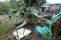 Las lluvias siguen causando desastres en el Valle del Cauca