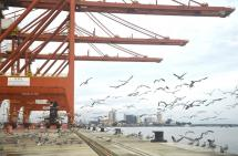 Gremios protestan por freno a obras del puerto de Aguadulce