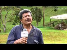 Radiografía de un paciente que pide mejor trato: el río Aguacatal