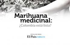 Marihuana medicinal: lo que usted debe saber del debate que viene
