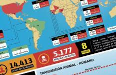 Radiografía del ébola en el mundo y guía básica para entender el virus