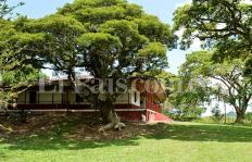 Informe exclusivo: denuncian estafa con terrenos incautados en Bugalagrande, Valle