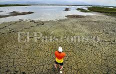 Impresionantes imágenes del daño ambiental que tiene seca la laguna de Sonso