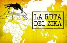 Gráfico: así ha viajado el Zika por el mundo