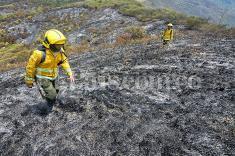 En fotos: los estragos después de un incendio en el Valle del Cauca