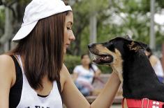 En fotos: Caleños marcharon con sus mascotas en el día internacional de los animales