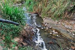 Video: Además de la sequía, la contaminación también 'mata' al río Fraile