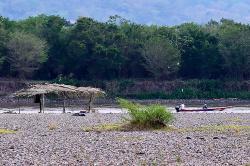 Video: sequía en Colombia deja pocos peces en el río Magdalena