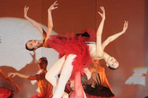 Imágenes: con asistencia masiva caleños despidieron el Festival de Ballet