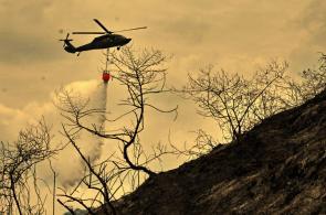 Imágenes: cenizas y estragos dejó el incendio de El Cabuyal, oeste de Cali