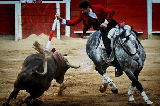Lo que dejó la Feria Taurina 2012: sudor, casta y coraje en la arena - elpais.com.co