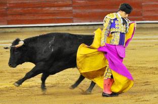 Fotos: Luis Miguel Castrillón brilló en una novillada pálida de Achury... - elpais.com.co