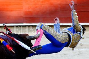 Imágenes: Alberto Aguilar fue corneado en su primera corrida de toros en la Feria de Cali - elpais.com.co