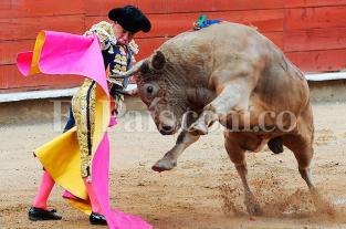 Hoy inicia la fiesta brava en la Plaza de Toros de Cañaveralejo - elpais.com.co