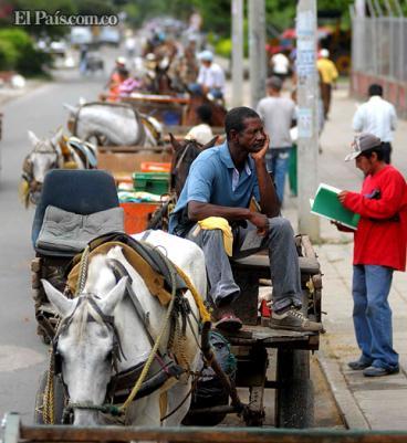 Pequeños camiones reemplazarían a las carretillas que circulan en Cali: Alcaldía