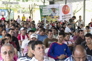 Desconfianza de campesinos en Estado estancó diálogos en Catatumbo