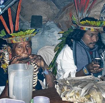 Yagé: guía sobre la mítica bebida que no se debe tomar a la ligera