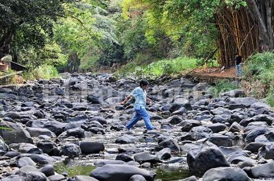 Alerta por el bajo nivel que registra el río Cali