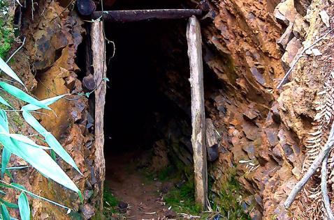 Acuerdan plan de choque para contrarrestar minería ilegal en el Parque Farallones de Cali