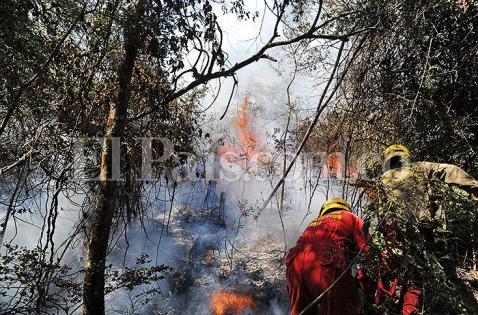 Más de 24 horas completa incendio en sector de Golondrinas