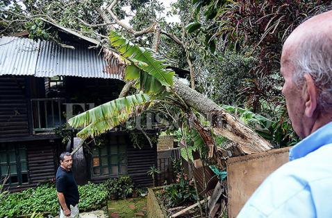 32 viviendas afectadas tras fuerte vendaval en el corregimiento de Felidia