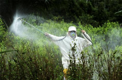 Autorizan uso del glifosato para aspersión terrestre