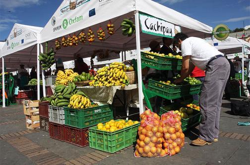 Bajan en Colombia los precios de verduras, frutas y tubérculos