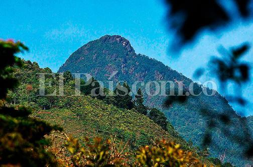 Proponen base permanente de la Policía para controlar minería ilegal en Los Farallones