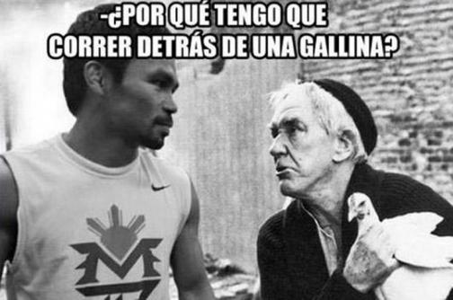 Los mejores memes de la 'Pelea del Siglo' entre Floyd Mayweather y Manny Pacquiao