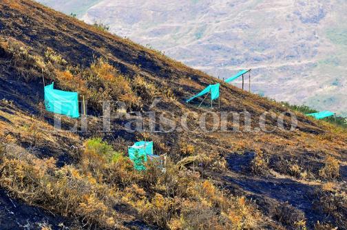 En imágenes: así fue el desalojo de más de 50 familias en el cerro de las Tres Cruces