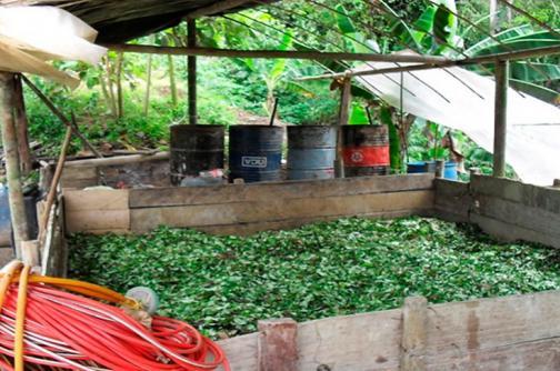 Destruyen laboratorio que procesaba cocaína para el 'Clan Úsuga'