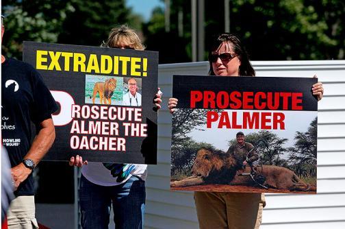 En imágenes: protestas en Estados Unidos por caza del león Cecil
