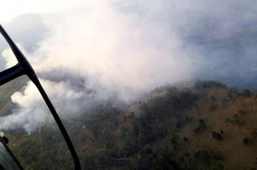 Tres hectáreas de bosque fueron consumidas por incendio en zona rural de Cali