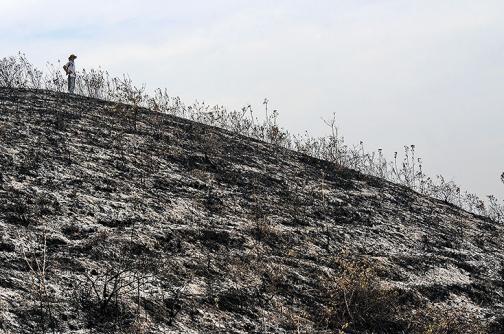 En imágenes: Así quedó Dapa luego de voraz incendio de cinco días