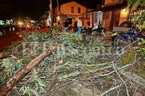 Caída de árboles e inundación en vías por vendaval en Jamundí